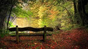autumn-landscape-bench on lake-google